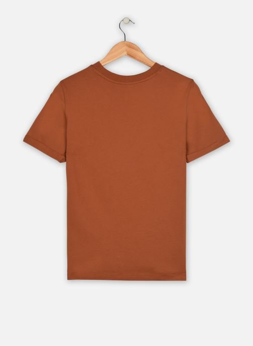 Vêtements Pieces T-Shirt Pcria Ss Fold Up Solid Tee Noos Bc Marron vue portées chaussures