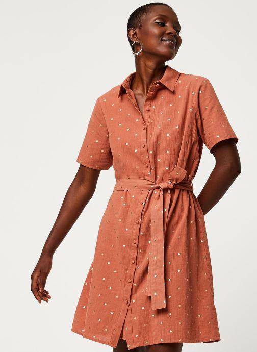 Vêtements Pieces Dresses Pcneya Ss Shirt Dress Kac Fc Marron vue détail/paire