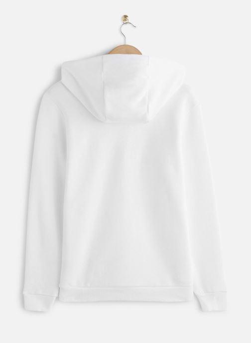 Reebok Sweatshirt hoodie - Cl F Vector Hoodie (Blanc) - Vêtements (441450)