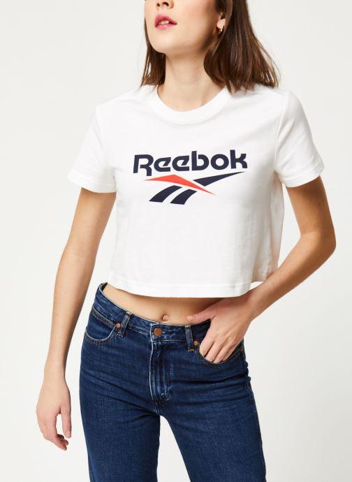 T-shirt - Cl F Vector Crop Tee
