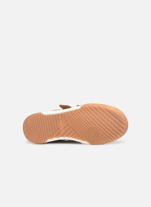 Sneaker Shoo Pom John Lo Scratch braun ansicht von oben