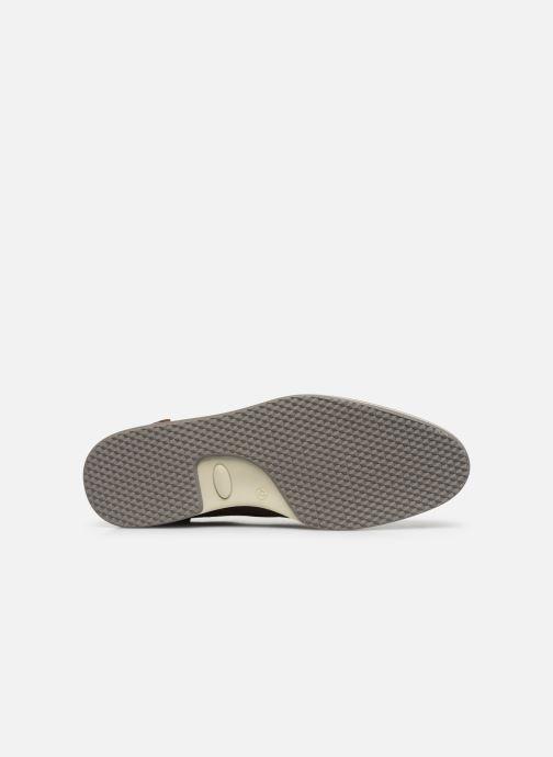 Scarpe con lacci Bullboxer Q00003888-10 Marrone immagine dall'alto