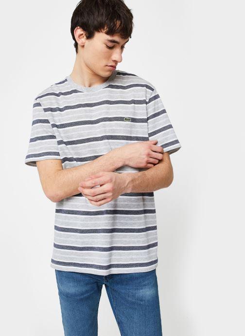 Kleding Lacoste Tee-Shirt Rayures Manches Courtes Grijs rechts