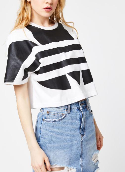 Vêtements adidas originals Lrg Logo Tee Blanc vue droite