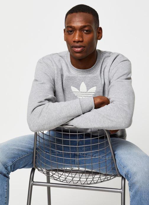 Vêtements adidas originals Adiclr Prm Crew Gris vue détail/paire