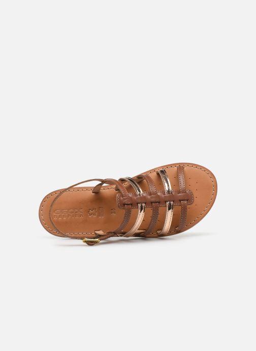 Sandales et nu-pieds Geox J Sandal Eolie Girl/J02BSA Marron vue gauche