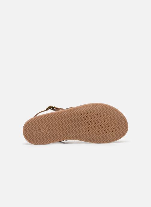 Sandales et nu-pieds Geox J Sandal Eolie Girl/J02BSA Marron vue haut