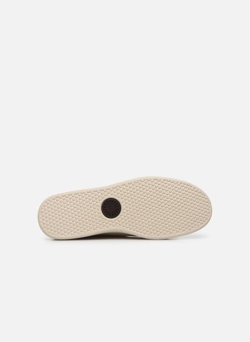 Sneakers UGG Pismo Sneaker Low Bianco immagine dall'alto