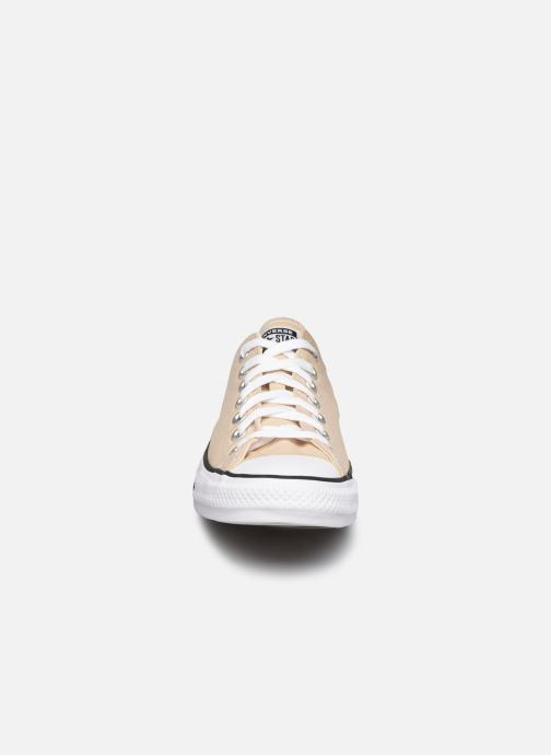 Baskets Converse Chuck Taylor All Star Seasonal Color Ox M Beige vue portées chaussures