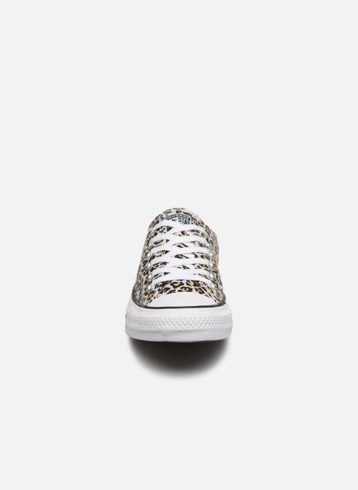 Sneakers Converse Chuck Taylor All Star Archive Print Ox Beige modello indossato
