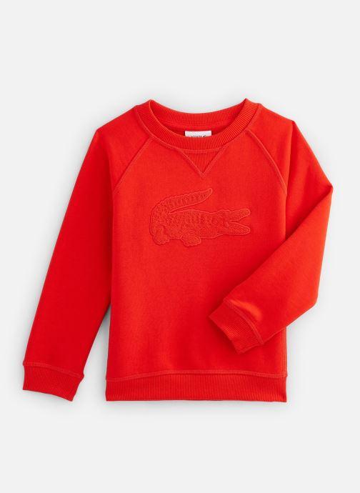 Kleding Accessoires Sweat-Shirt Enfant 1