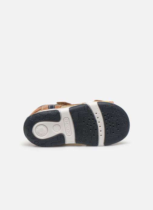 Sandali e scarpe aperte Geox B Sandal Tapuz Boy B020XA Marrone immagine dall'alto