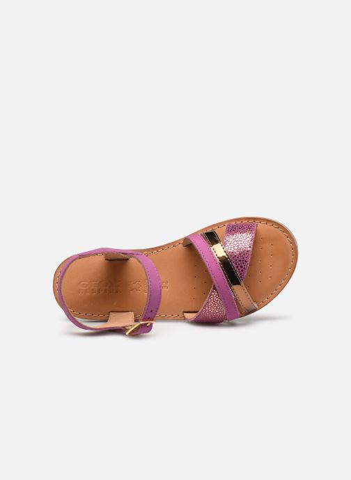 Sandali e scarpe aperte Geox J Sandal Eolie Girl J02BSC Rosa immagine sinistra