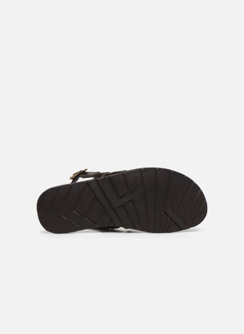 Sandali e scarpe aperte Les Tropéziennes par M Belarbi DISA Marrone immagine dall'alto