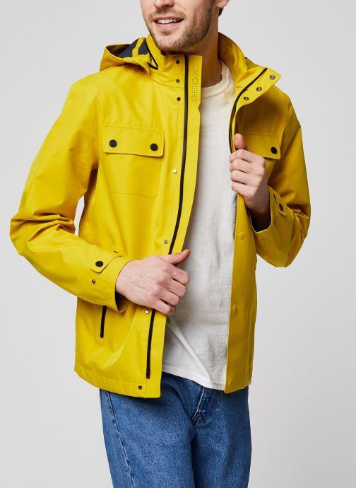 Kleding Geox Sanford Short Jacket Geel detail