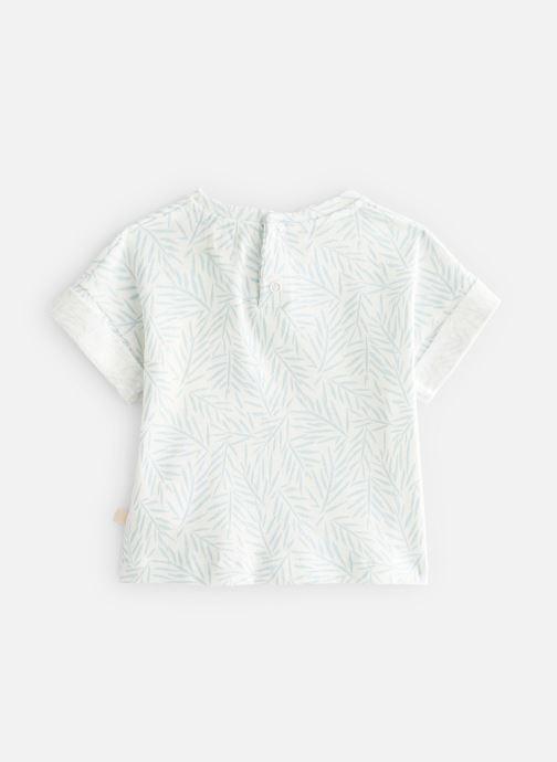 Vêtements Les Petites Choses T-Shirt TORRY Vert vue bas / vue portée sac