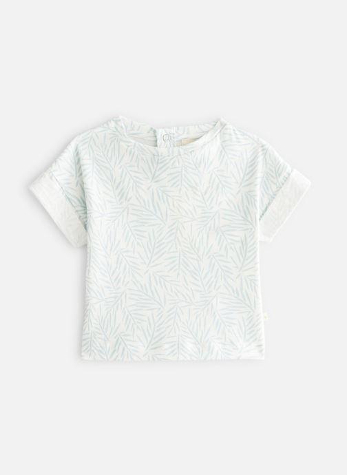 Vêtements Les Petites Choses T-Shirt TORRY Vert vue détail/paire