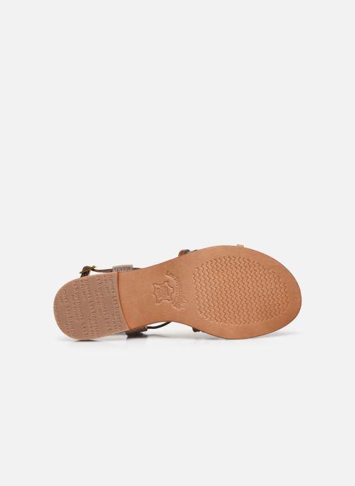 Sandales et nu-pieds Les Tropéziennes par M Belarbi HARRY Or et bronze vue haut