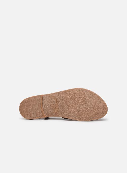 Sandales et nu-pieds Les Tropéziennes par M Belarbi CHOU Marron vue haut