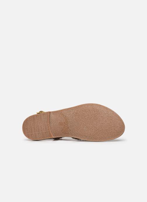 Sandales et nu-pieds Les Tropéziennes par M Belarbi CHOU Or et bronze vue haut