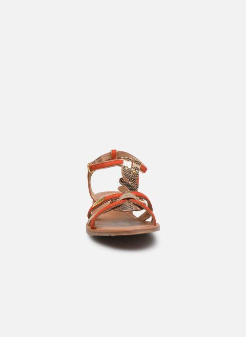 Sandali e scarpe aperte Les Tropéziennes par M Belarbi HAMUC Arancione modello indossato