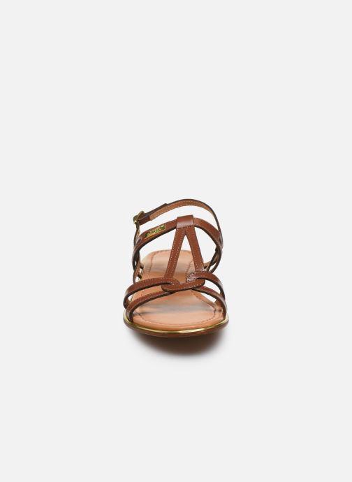 Sandales et nu-pieds Les Tropéziennes par M Belarbi HACKLE Marron vue portées chaussures