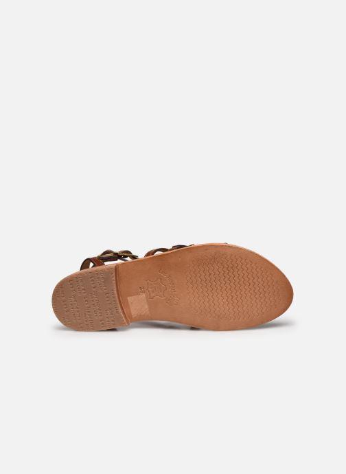 Sandales et nu-pieds Les Tropéziennes par M Belarbi BOUCLE Marron vue haut