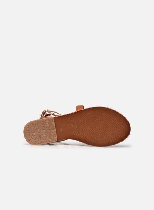Sandales et nu-pieds Les Tropéziennes par M Belarbi OCEANIE Marron vue haut