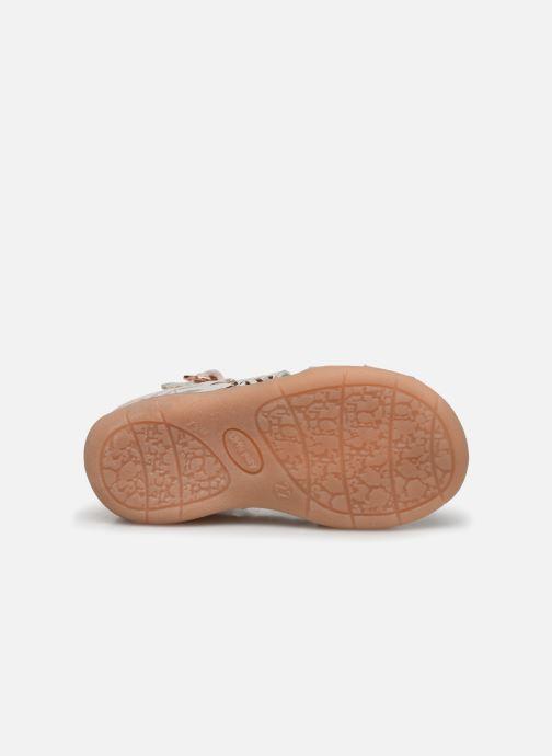 Sandali e scarpe aperte Little Mary Laure Argento immagine dall'alto