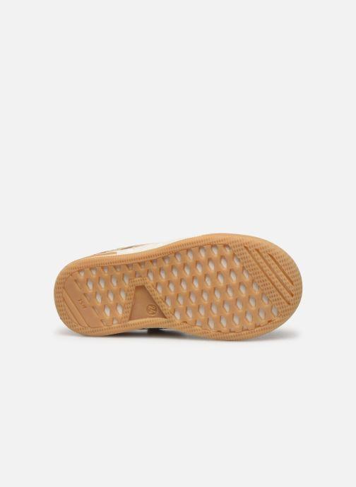 Sneakers Little Mary Logan Marrone immagine dall'alto