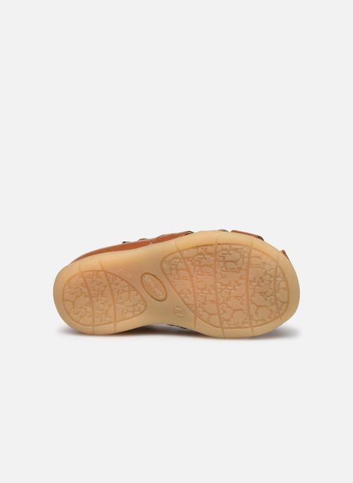 Sandali e scarpe aperte Little Mary Grégoire Marrone immagine dall'alto