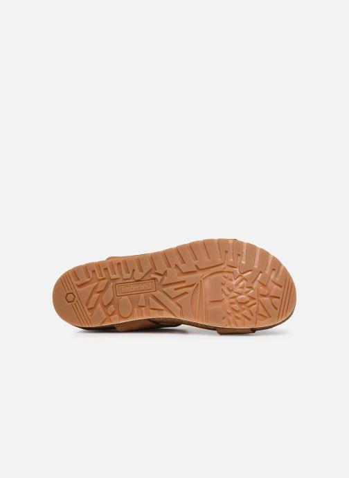 Sandali e scarpe aperte Timberland Malibu Waves 2Band Sandal Marrone immagine dall'alto