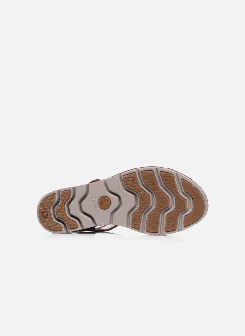 Sandales et nu-pieds Timberland Lottie Lou 1-Band Sandal Bordeaux vue haut