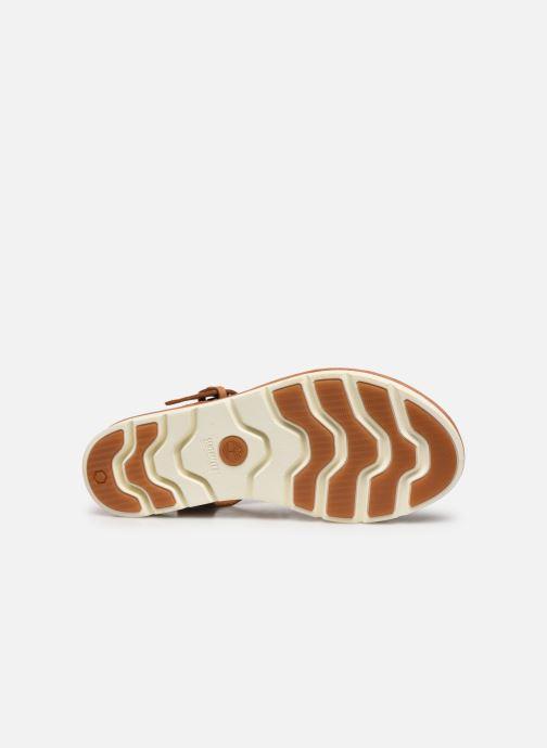 Sandales et nu-pieds Timberland Lottie Lou 1-Band Sandal Marron vue haut