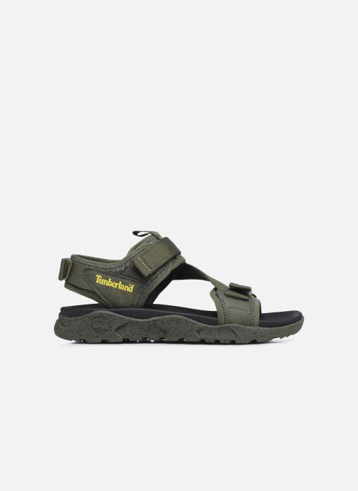 Sandalen Timberland Ripcord 2 Strap Sandal grün ansicht von hinten