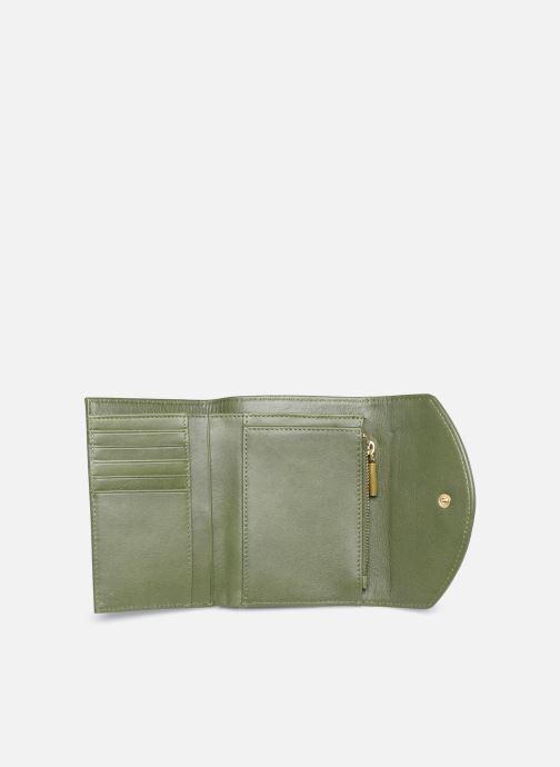 Portemonnaies & Clutches Nat & Nin Luz grün ansicht von hinten