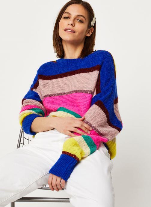 Vêtements Essentiel Antwerp Virtuosa knitwear Multicolore vue détail/paire