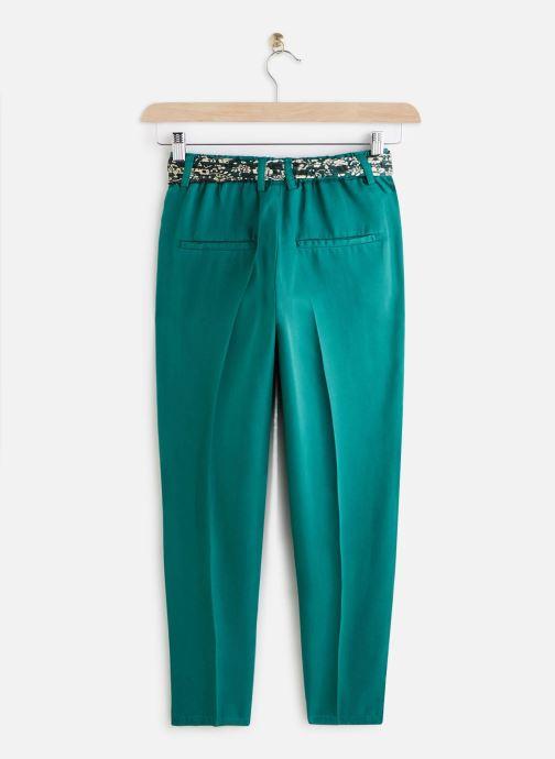Vêtements Lab Dip Pantalon Thea Tencel Vert vue bas / vue portée sac