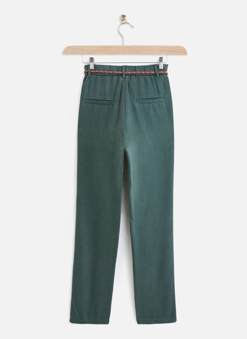 Vêtements Lab Dip Pantalon Jess Tencel Vert vue bas / vue portée sac