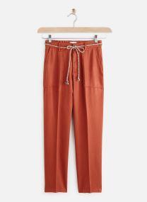 Vêtements Accessoires Pantalon Jess Tencel