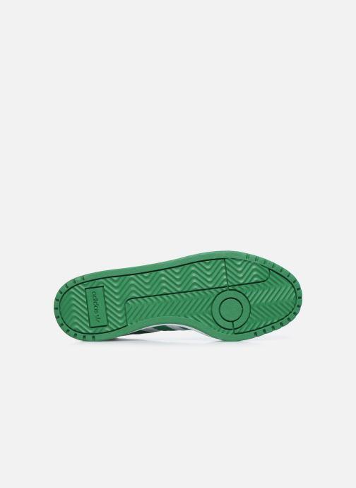 Sneakers adidas originals Team Court Bianco immagine dall'alto