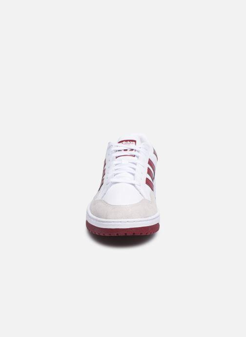 Baskets adidas originals Team Court Blanc vue portées chaussures