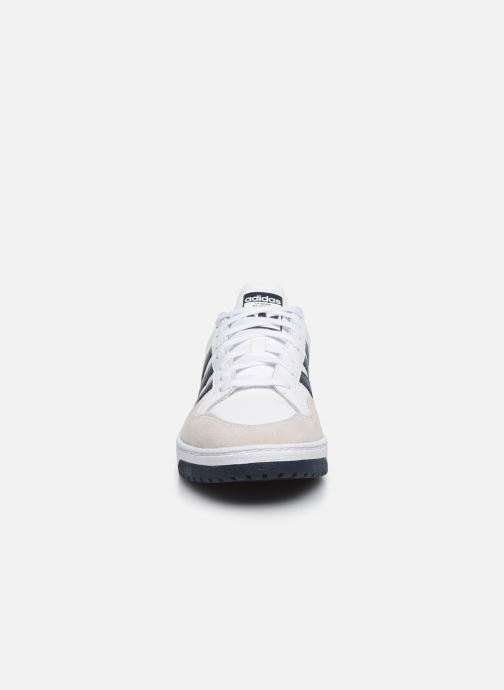 Sneakers adidas originals Team Court Wit model