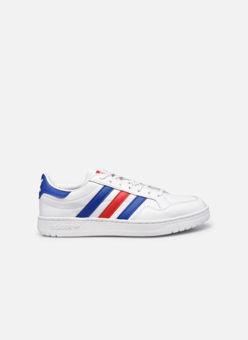 Sneaker adidas originals Team Court weiß ansicht von hinten