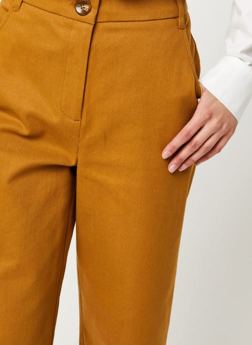 Vêtements Louche Pantalon Timi Twill Marron vue face