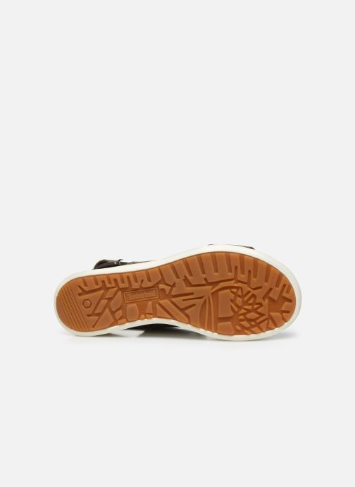 Sandals Timberland Los Angeles Wind 2 Bands Sandal Brown view from above