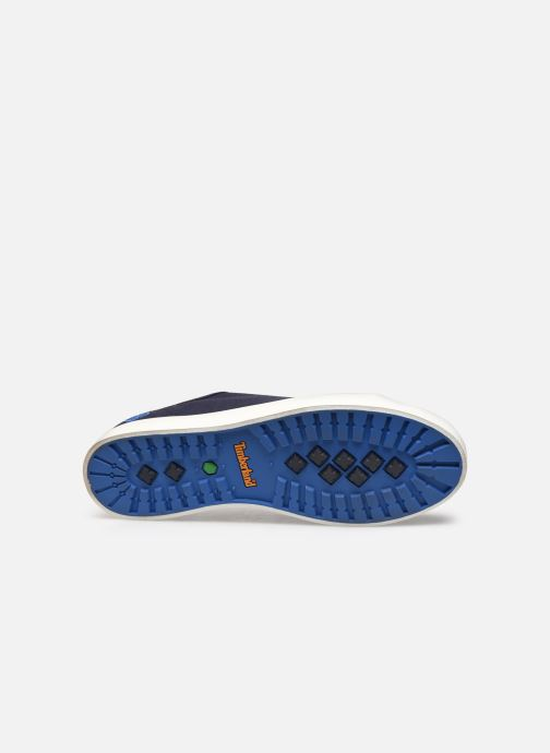 Trainers Timberland Newport Bay Ox Blue view from above