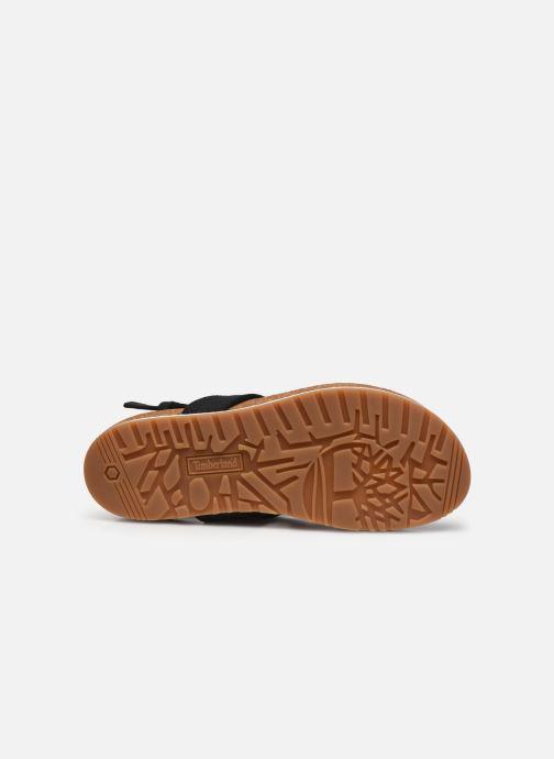 Sandales et nu-pieds Timberland Malibu Waves Thong Noir vue haut