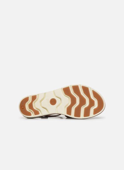Sandales et nu-pieds Timberland Lottie Lou 3-Band Sandal Marron vue haut