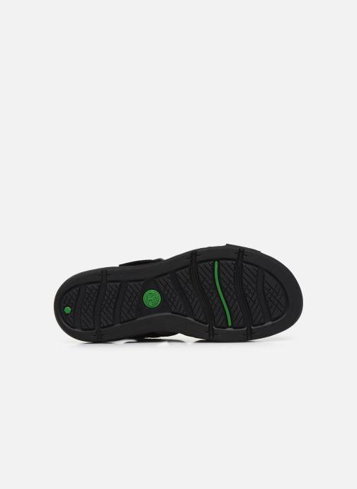 Sandales et nu-pieds Timberland Wilesport Leather Sandal Noir vue haut